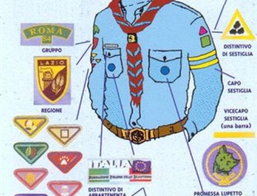 L'uniforme del lupetto/a