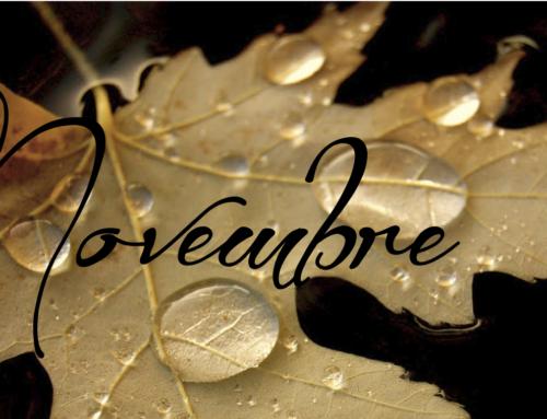 Date e impegni mese di Novembre