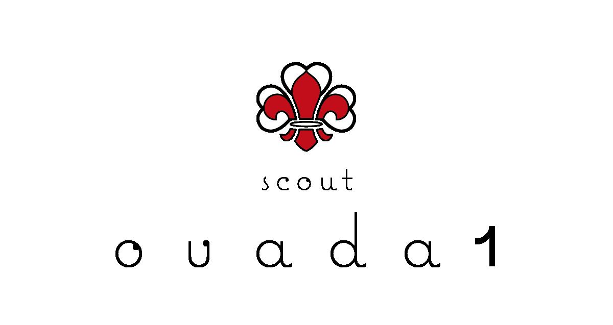 logo scout